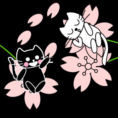 たまとクロと桜