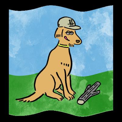 dog(GoldenRetriever)