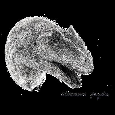 Alloseurus fragilis