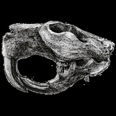 Castoroides ohioensis
