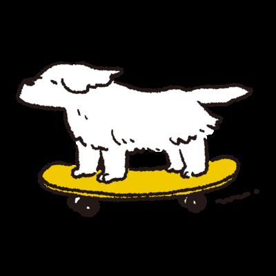 スケボー犬