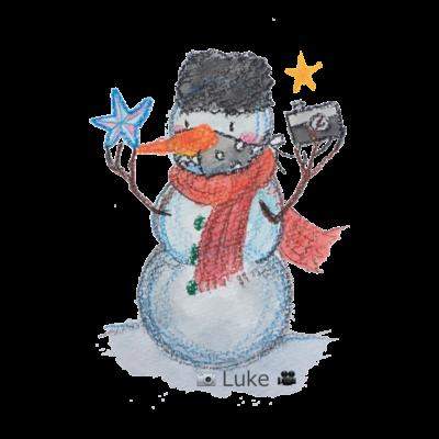 SnowLuke