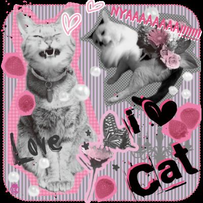 いちごさん家の猫