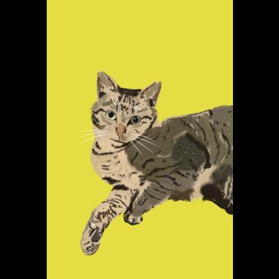 ネコ シリーズ