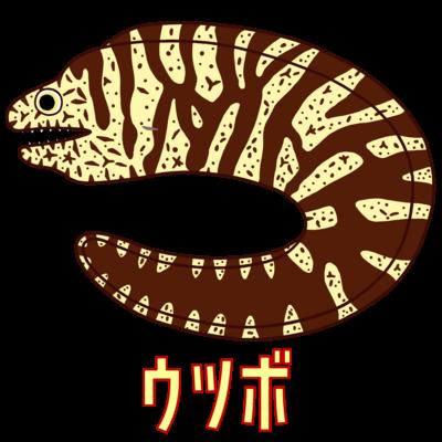 ウツボ(ホンウツボ)