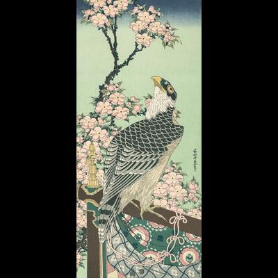 葛飾 北斎 《桜花・鷹》