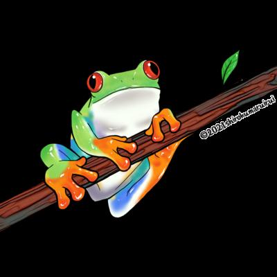 カエル/雑貨