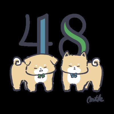 48(柴犬)