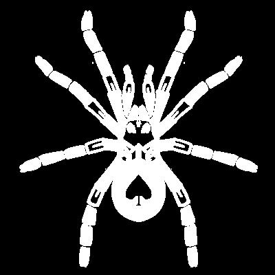 タランチュラ白