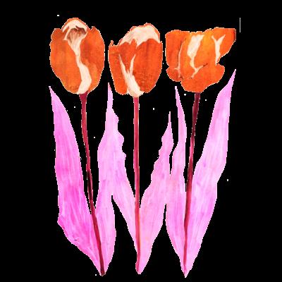 チューリップ_pink ~ 2021 ~