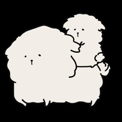 ふわふわの白い犬