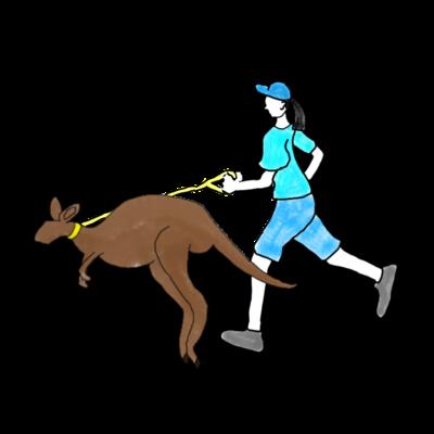 カンガルーとジョギングする人