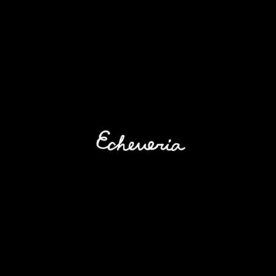 エケベリア 2色アリ