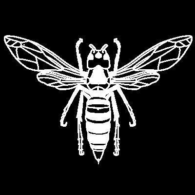 ドクロスペードの蜂 濃色