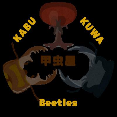 カブクワ甲虫屋