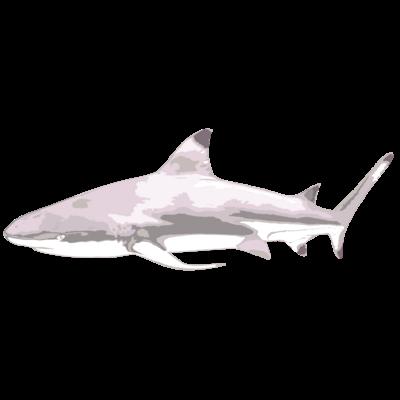 サメアイテム
