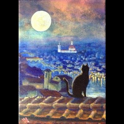 月夜猫フィレンツェ1
