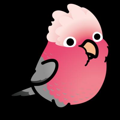 Chubby Bird モモイロインコ