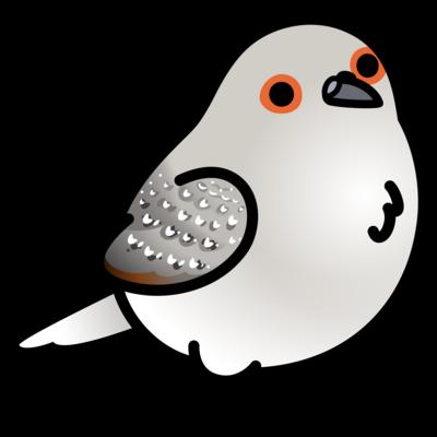 Chubby Bird 鳩