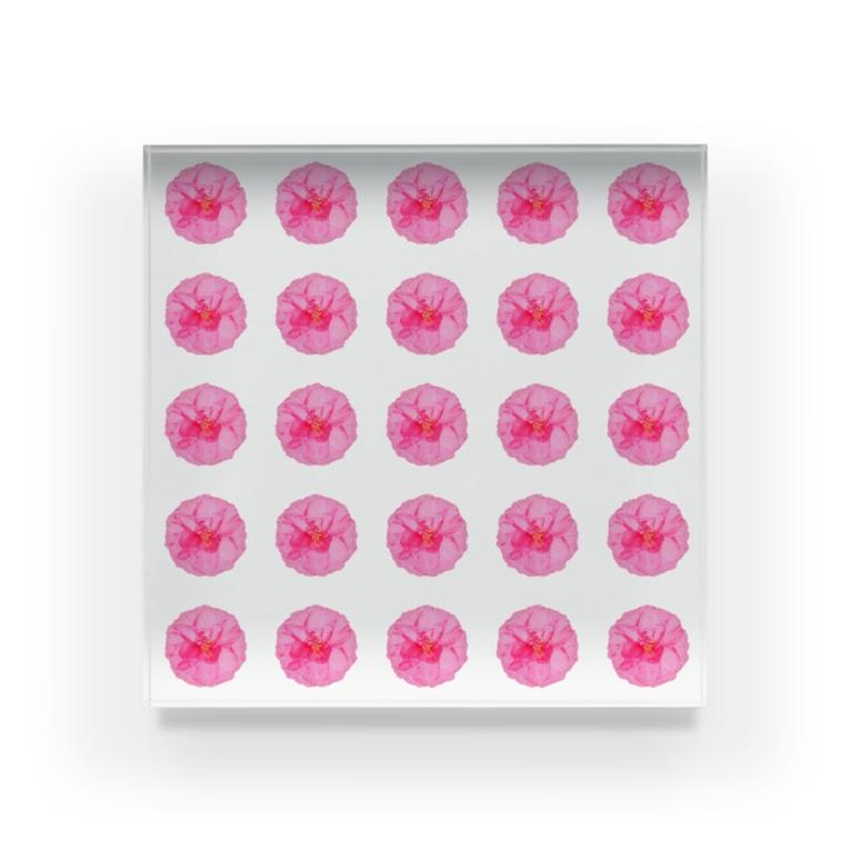 ちるまの店の並びお花 Acrylic Block