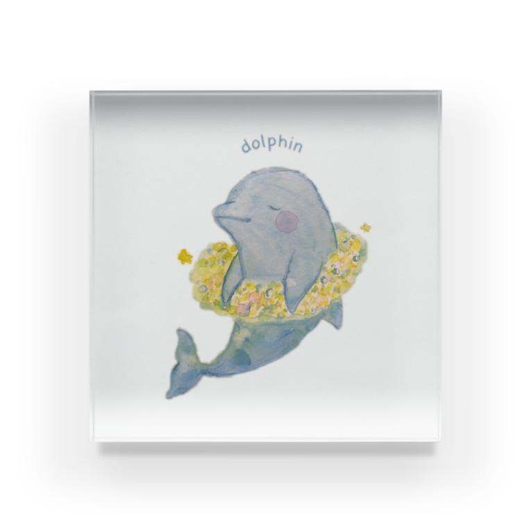 irukahimeのゆったりdolphin Acrylic Block