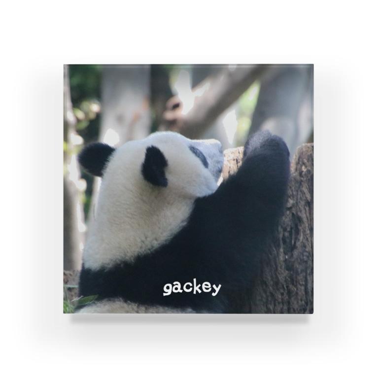 gackeyのシャンシャンメモリーⅡ Acrylic Block