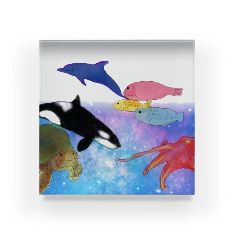 St.SKの水族館 Acrylic Block