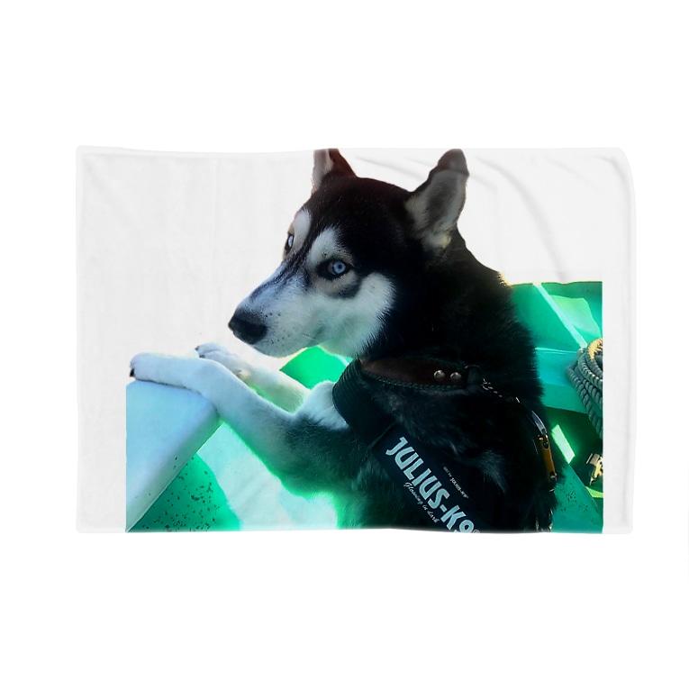 Husky'S Herb Gardenの船乗りハスキー Blanket