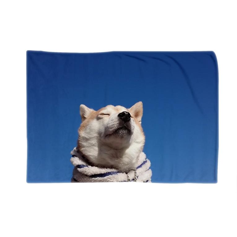 豆柴ビーンのお店の豆柴ビーンと青空 Blankets