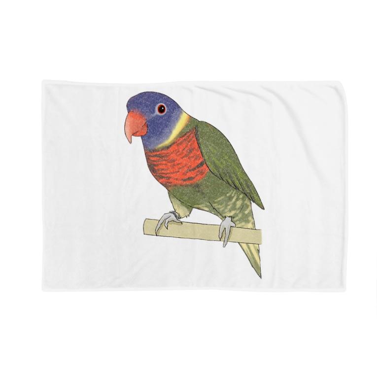 まめるりはことりの色合いが綺麗なゴシキセイガイインコちゃん【まめるりはことり】 Blankets
