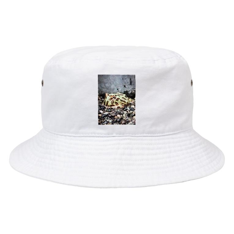 ばにーすぺーのベルツのガエルくん Bucket Hat