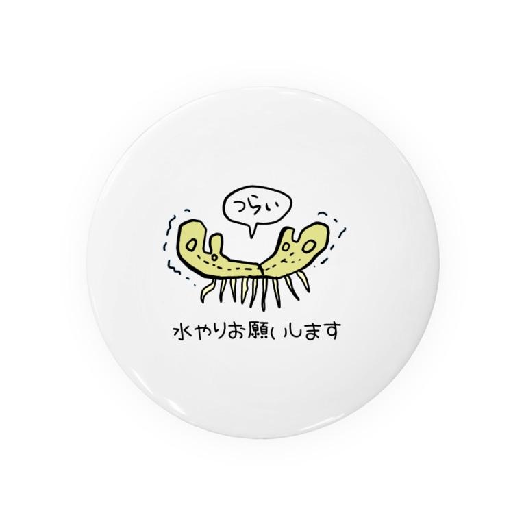 ぱぁら(多忙)の枯れてるゼニゴケちゃん Badges