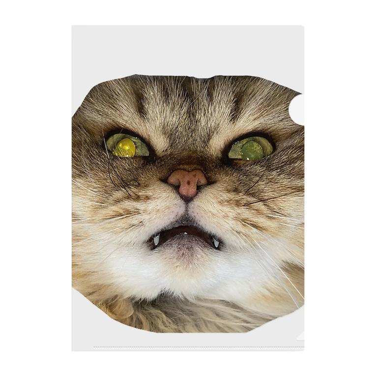 猫ネコショップの猫ネコ(顔) Clear File Folder