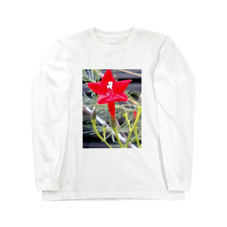 Dreamscapeの思い出・・・開いて・・・ Long sleeve T-shirts