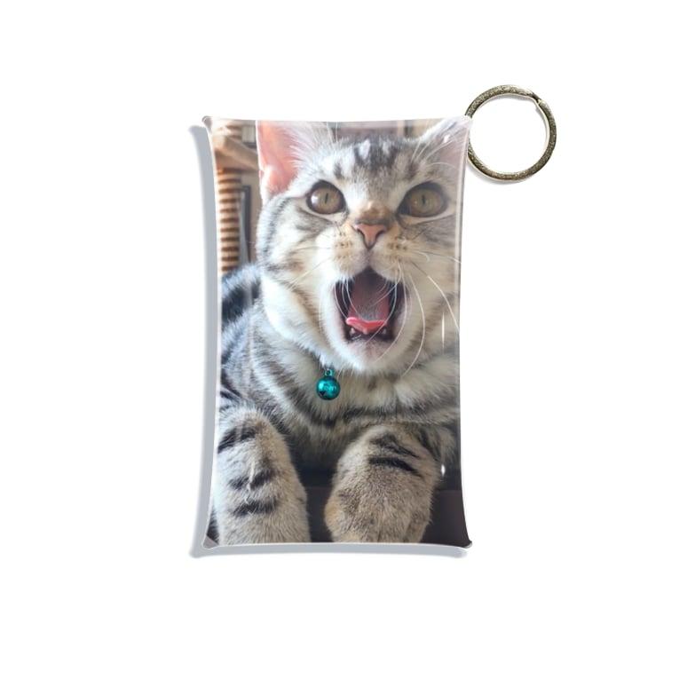 猫のロズ君_ねこネコcatのネコのロズ君 猫 Mini Clear Multipurpose Case