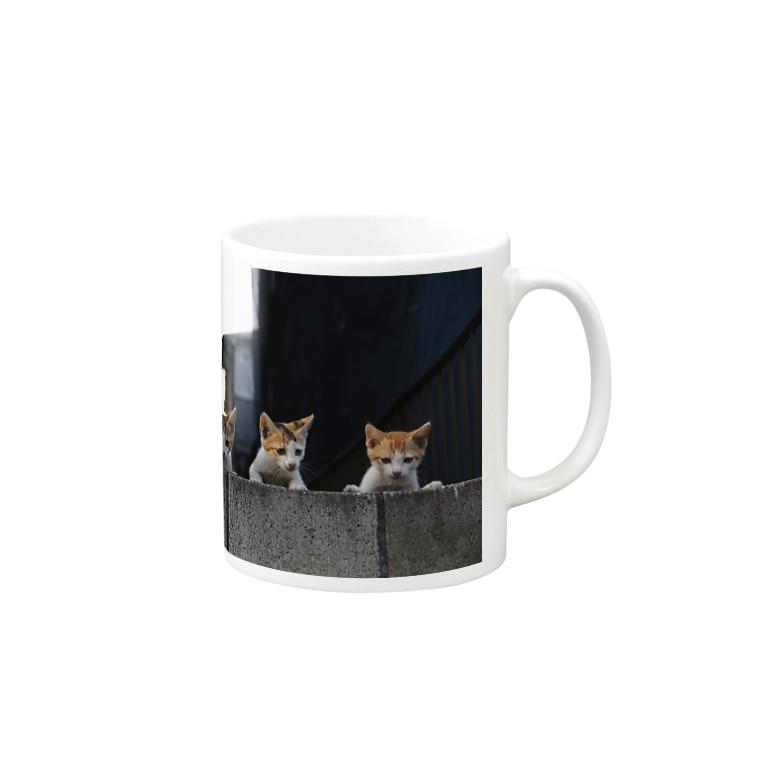 シッポ追いの猫写真店のkitten gang Mugs