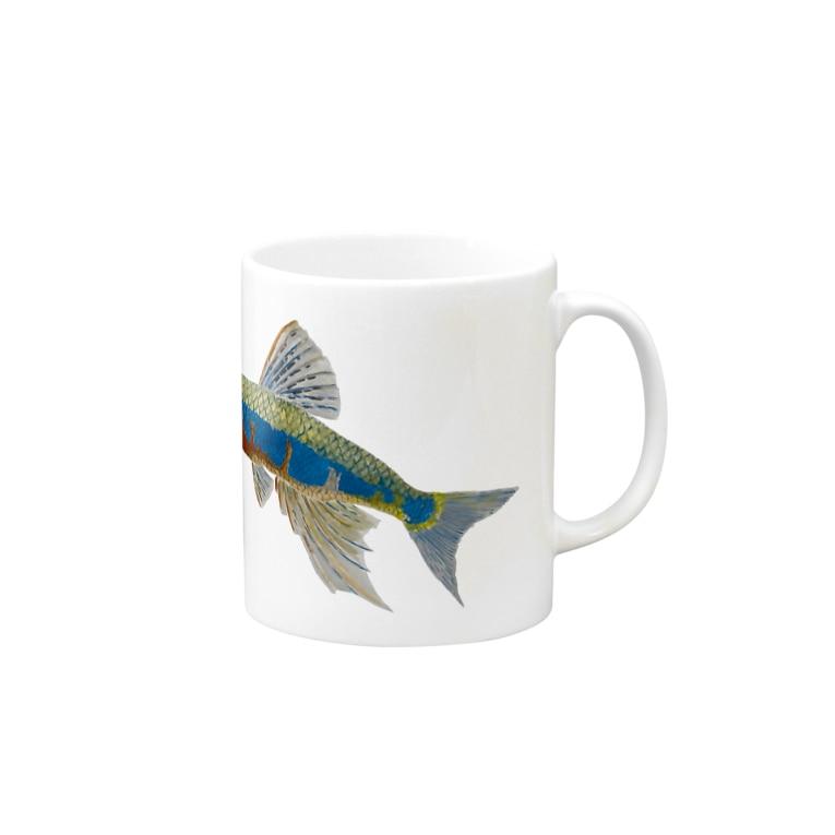 Coshi-Mild-Wildのオイカワです‼️ Mugs