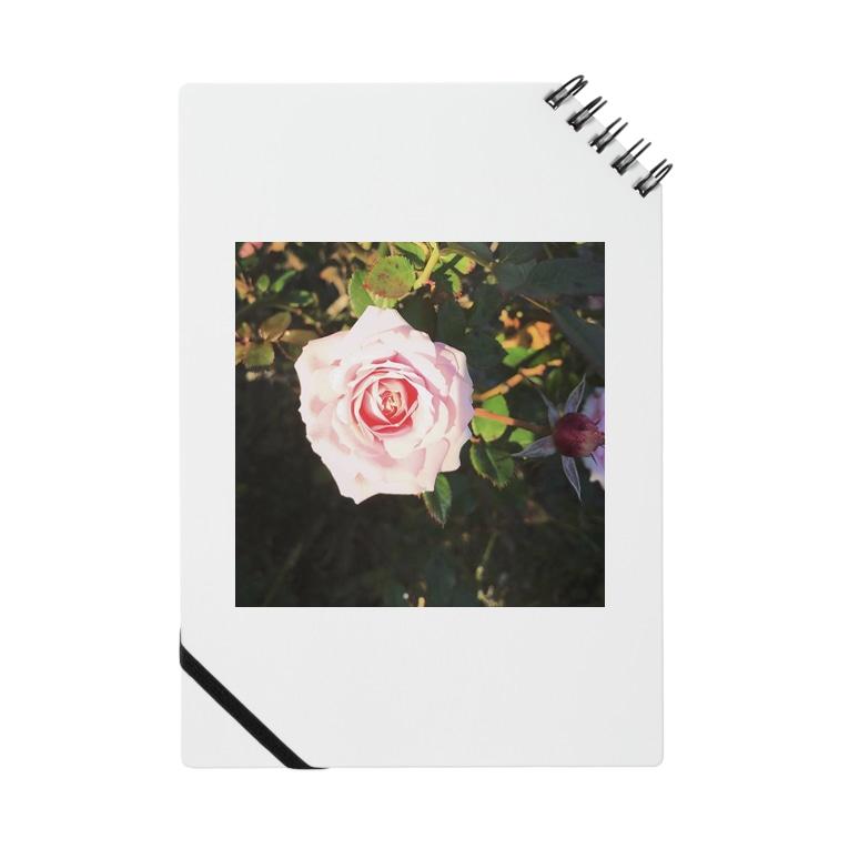 yuracpgのバラ園のバラ Notes