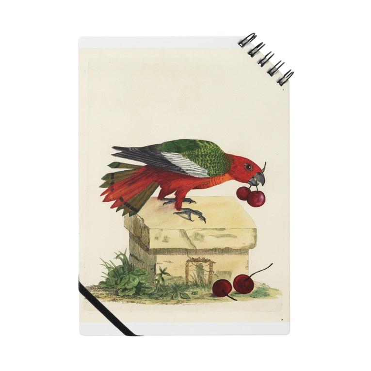 J. Jeffery Print Galleryの博物画の鳥 Notebook
