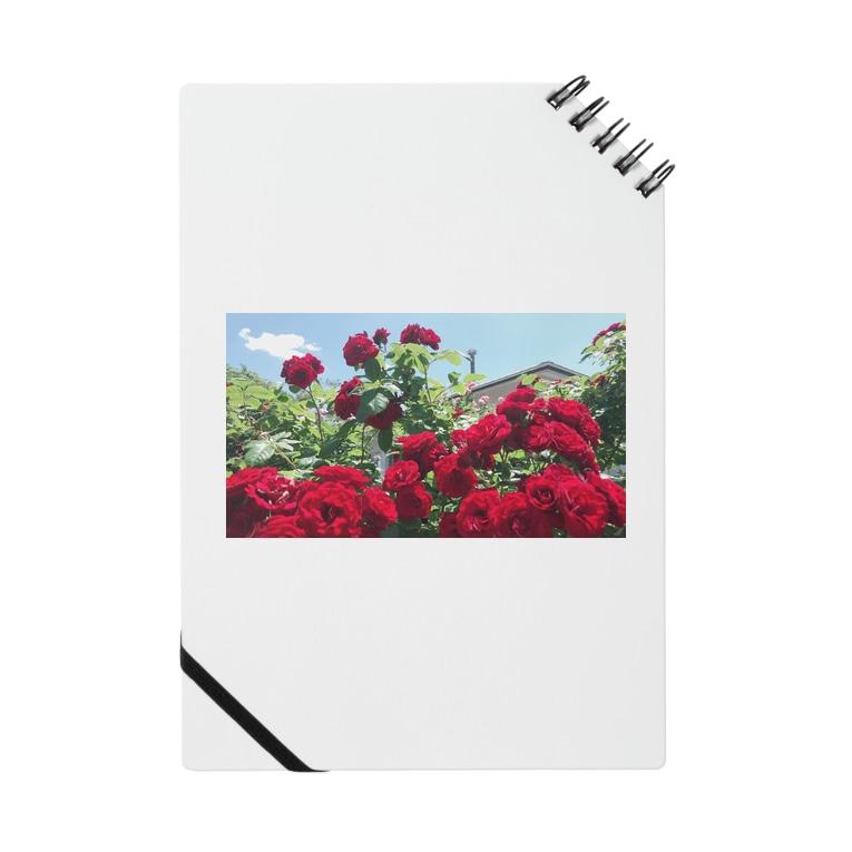 namaste99の薔薇の花 Notes