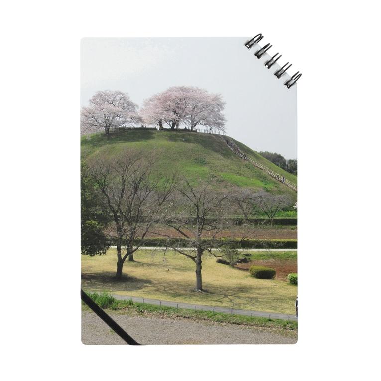 FUCHSGOLDの日本の古墳:丸墓山古墳と桜 Japanese ancient tomb: Maruhakayama / Gyoda Notes
