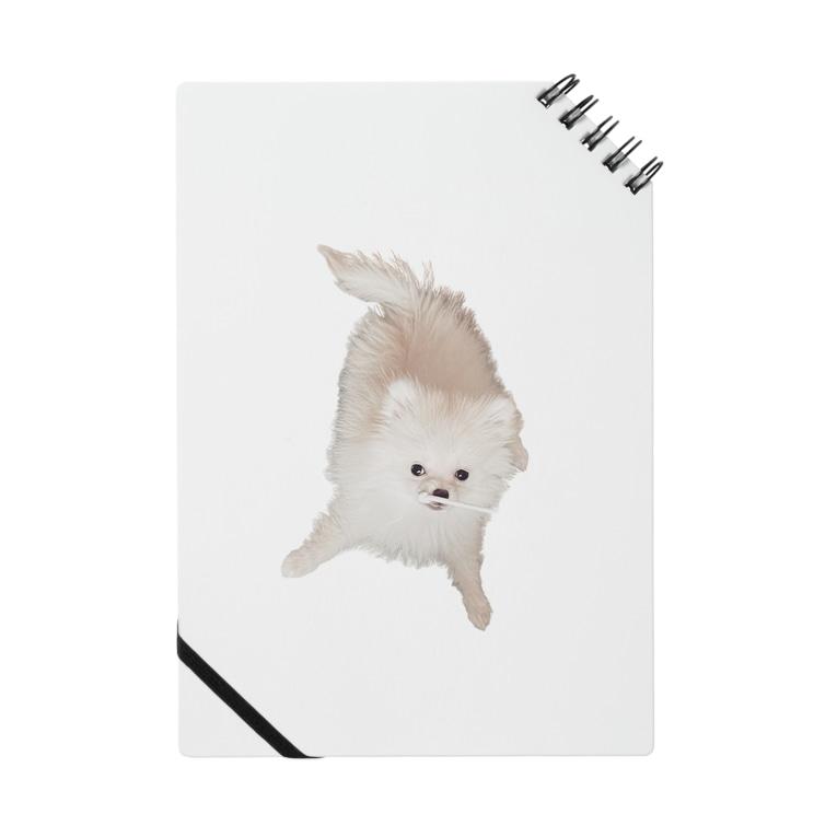 kanonの紐カミカミののたん(白ポメラニアン) Notebook