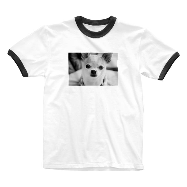 akane_artのモノクロチワワ(おすまし) Ringer T-shirts