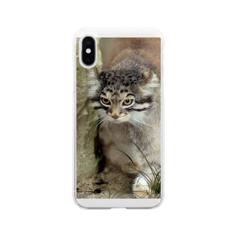 otocolobus manulのマヌルネコ Soft clear smartphone cases