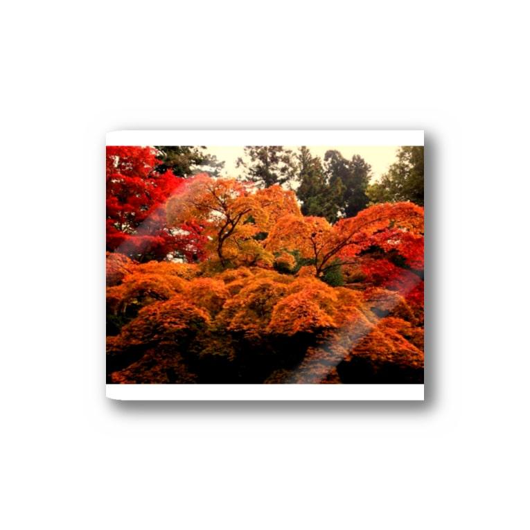 nanohanahoの紅葉 Stickers
