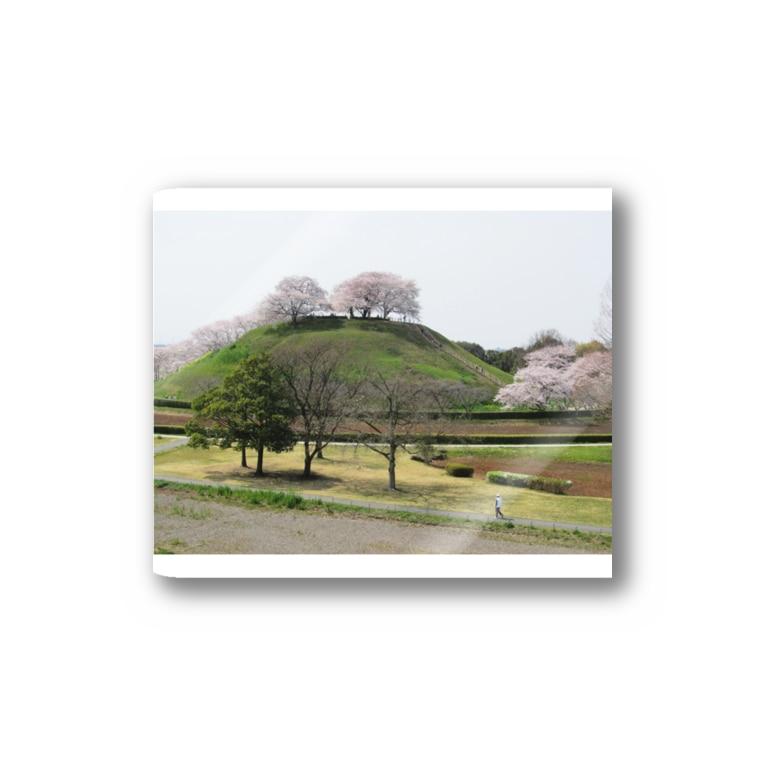 FUCHSGOLDの日本の古墳:丸墓山古墳と桜 Japanese ancient tomb: Maruhakayama / Gyoda Stickers