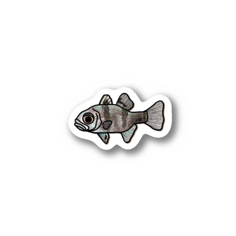 snaggedgorillaのマダラテンジクダイ Sticker
