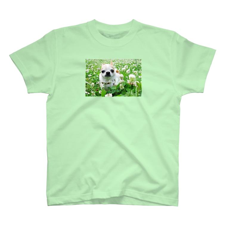 akane_artのカラフルチワワ(クローバー) T-shirts