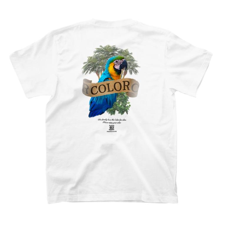 FreshBMajorのCOLOR T-shirtsの裏面