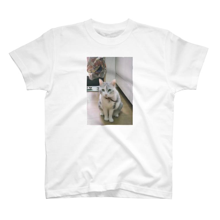 ゆみぴ〜のおすわりするうちのねこん T-shirts